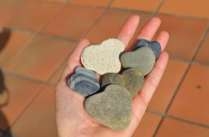 Heart shaped rocks I found during one walk along the beach with Cameron.. looks like love to me .